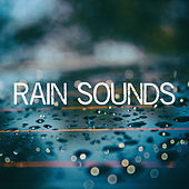 Rain Sounds von Various Artists