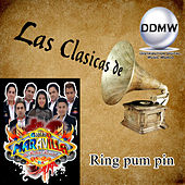 Ring Pum Pin de Grupo Maravilla