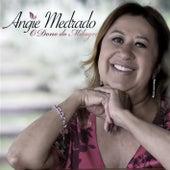 O Dono do Milagre de Angie Medrado