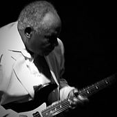 Chicago Blues Legend de Byther Smith