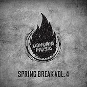 Spring Break, Vol. 4 de Various