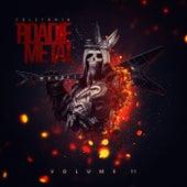 Volume 11 de Various Artists