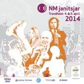 Nm Janitsjar 2014 - 1 Divisjon von Various Artists