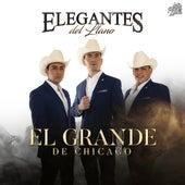 El Grande de Chicago by Elegantes del Llano