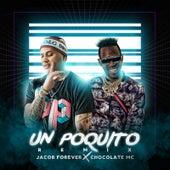 Un Poquito (Remix) de Jacob Forever