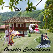 Orgullo Colombiano, Vol. 14 de Various Artists