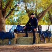 Los Relatos de Toro Leon y sus Chavalos