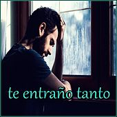 Te Entraño Tanto von Various Artists