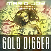 Gold Digger de Mario Joy