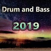 Drum and Bass 2019 von Various