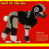 Year of the Dog de Royal Trux