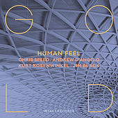 Gold by Human Feel