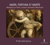 Amor, fortuna e morte: Madrigali by Various Artists