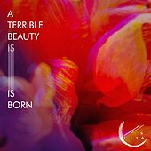 A Terrible Beauty Is Born de WWE
