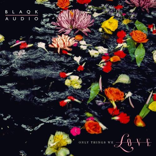 The Viles de Blaqk Audio