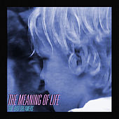 The Meaning of Life de The Bad Dreamers