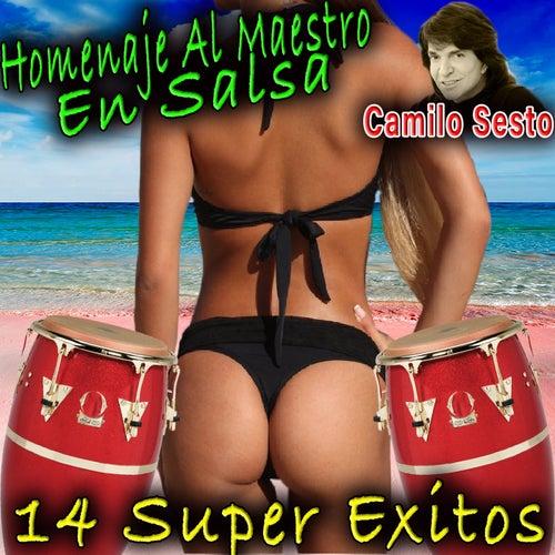 Homenaje Al Maestro En Salsa by Camilo Sesto