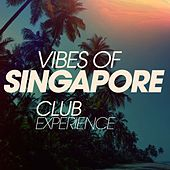 Vibes of Singapore Club Experience by Various Artists