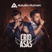 Crio Asas (Ao Vivo) de Augusto