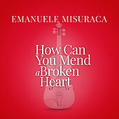 "How Can You Mend A Broken Heart (From ""La Compagnia Del Cigno"") by Emanuele Misuraca"