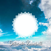 Delicate Rainfall Songs de Sounds Of Nature