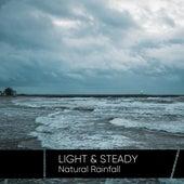 Light & Steady Natural Rainfall de Sounds Of Nature