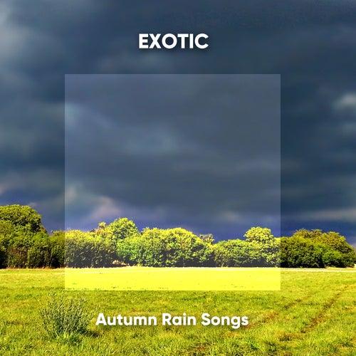 Exotic Autumn Rain Songs de Sons da Natureza