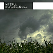 Mindful Spring Rain Noises by Natural Sounds