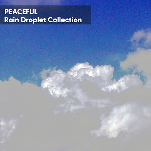 Peaceful Rain Droplet Collection de Sons da Natureza