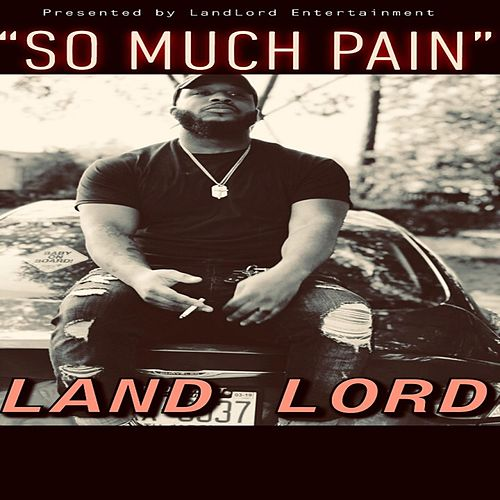 So Much Pain von Landlord