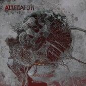 Stellar Tidal Disruption by Allegaeon