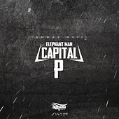 Capital P von Elephant Man