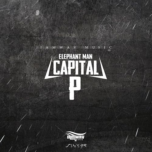 Capital P by Elephant Man