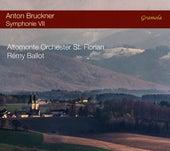 Bruckner: Symphony No. 7 in E Major, WAB 107 by Altomonte Orchester St. Florian
