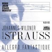 Allegro fantastique Live in Concert de The Vienna Johann Strauss Orchestra