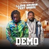 Demo by Lloys Kayana