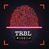 Trbl Riddim by Various Artists