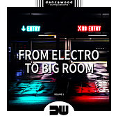 From Electro To Big Room, Vol. 1 - EP by Various Artists