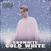 Cold White van Snowhite