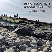 Mystery Well by Various Artists