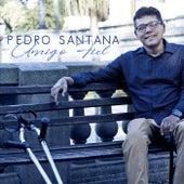 Amigo Fiel by Pedro Santana