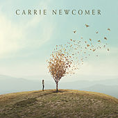 The Point of Arrival de Carrie Newcomer