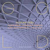 Gold by Human Feel with Andrew D'Angelo, Chris Speed, Kurt Rosenwinkel