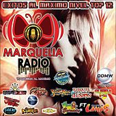 Exitos Al Maximo Nivel Top, Vol. 12 by Various Artists