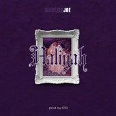 Aaliyah de Joe