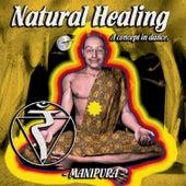 Natural Healing, Vol. 4 von Various Artists