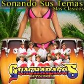 Sonando Sus Temas Mas Clasicos de Los Guacharacos de Colombia (1)