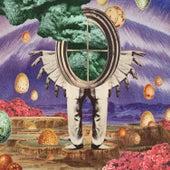 The Gratitude Principle by The Cosmic Range