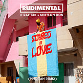 Scared of Love (feat. RAY BLK & Stefflon Don) (Preditah Remix) by Rudimental