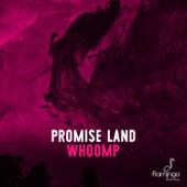 Whoomp de Promise Land